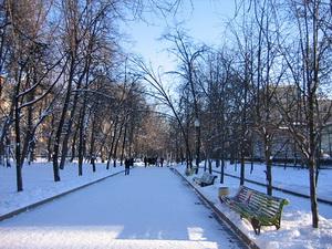 Басманный парк зимой