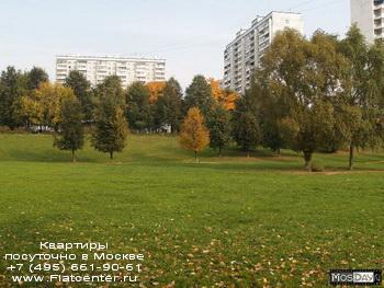 Природа района Москвы Центральное Чертаново
