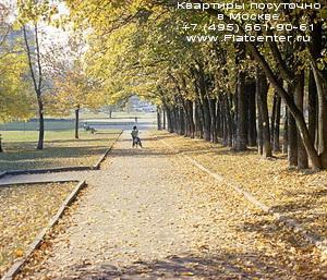 Парк Ленинского проспекта,рядом с Университетом,на Ленинских Горах