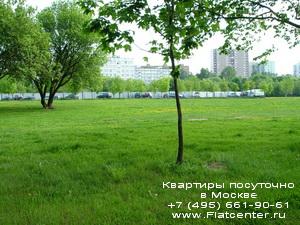 парк  Нагатино-Садовники