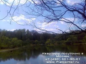 Природа района Новогиреево