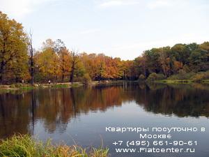 Районный парк в Новогиреево