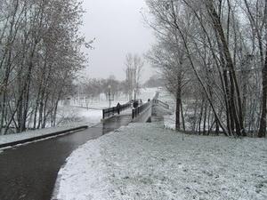 Вид на парк в Ростокинском районе