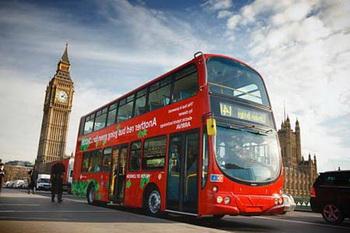 Автобусные туры,чудесное приключение и поездки по всему миру