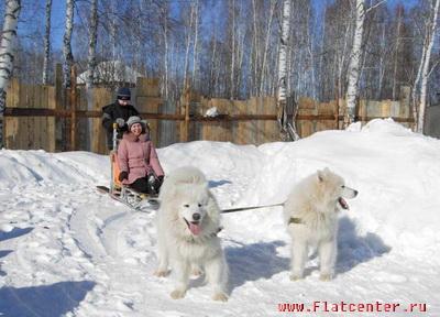Зимний отдых в России.Отдых зимой Подмосковье.