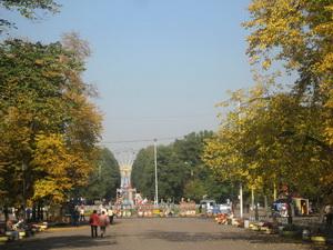 Фото района у м.Сокольники